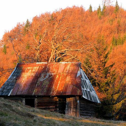 jesień2_maly2016_owrsilesia